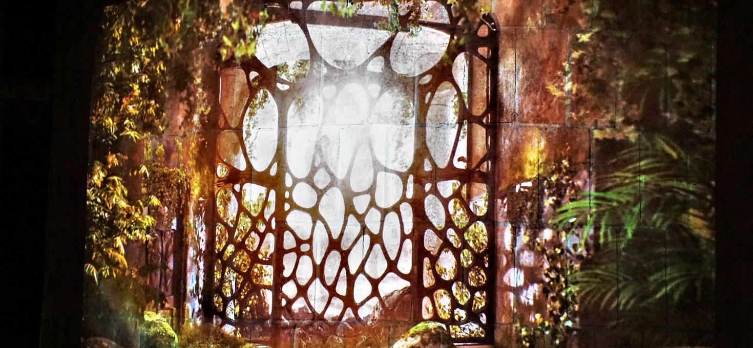 W dżungli Tarzana – czyli Casa Milà
