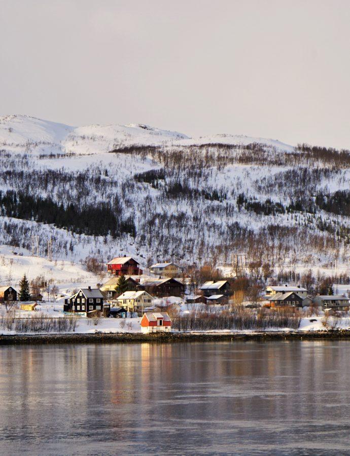 """Co w wodzie piszczy? – czyli arktyczny rejs z historią i ekologią w tle<h4><img src=""""http://nastepnyprzystanek.pl/wp-content/uploads/2021/01/Kalendarz-ikona.png"""" style=""""width: 30px""""> luty 2020</h4>"""